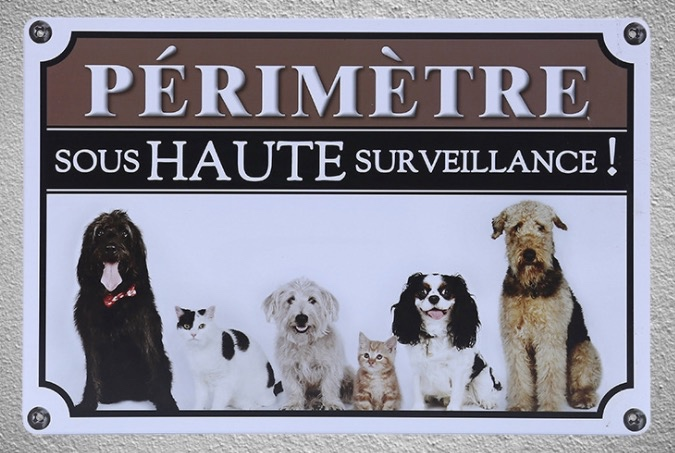 1 pc Area sous haute surveillance dogs trespassing french Tin Plate Sign wall plaques house Decoration Dropshipping metal Poster