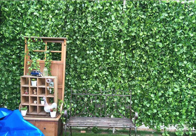 popular evergreen ivybuy cheap evergreen ivy lots from china, Beautiful flower