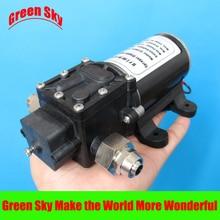 48V DC 100W fog/spray/misting,spraying pesticide,farm,greenhouse,garden irrigation use high pressure diaphragm pump sprayer