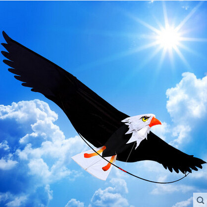 Outdoor Fun Sports 2m High Quality 3D Eagle Kite/ Desert Eagle With Handle And 30m Line Easy Control Good Flying