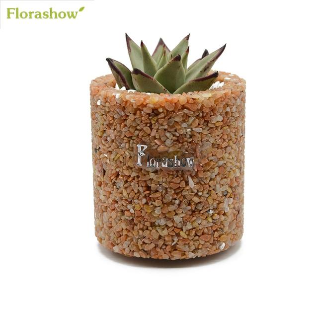 Florashow Fleur Pot Charnu Plantes Succulentes Mini Pots Rouge
