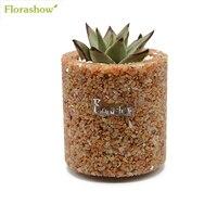 FLORASHOW Flower Pot Meaty Plants Mini Succulents Pots Natural Dongling Modern Pot Indoor Decor Small Pots