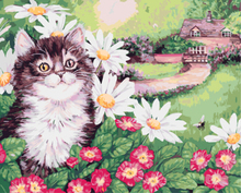 "DIY Painting By Number – Cat (16""x20"" / 40x50cm)"