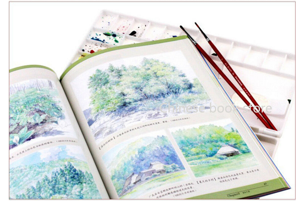Chinese Watercolor drawing teaching book for beginners: Master ...