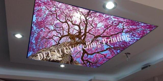 t 2016 berry impression plafond film avec led bande pour plafond d coration fonction comme. Black Bedroom Furniture Sets. Home Design Ideas