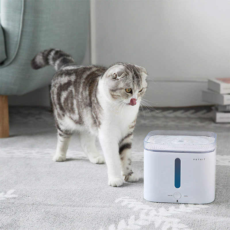 Image result for cat drinking fountain petkit