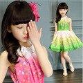 Новое лето 2016 Детские Детская одежда цветочный богемной платье девушки бальные платья Малышей девушка одежда для 3 ~ 10 лет дети