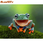 RUOPOTY Frame Frog D...