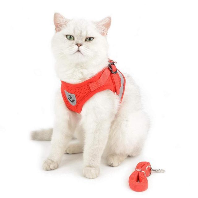 Reflective Dog Cat Harness Pet Adjustable Vest Walking 5