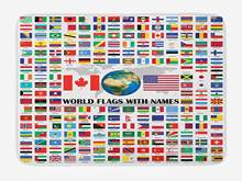 Flags Bath Mat Big Collection of World Flags Names Different Countries Nationalities Patriotic Plush Bathroom Mat(China)