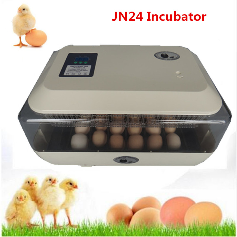 Household Family Use   24 Eggs Incubator Automatic Temperature Controller Digital Display Hatcher on Sale dmx512 digital display 24ch dmx address controller dc5v 24v each ch max 3a 8 groups rgb controller