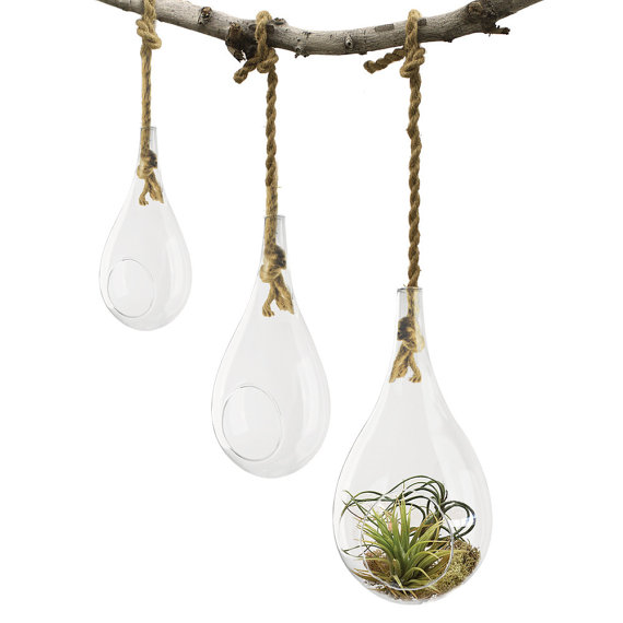 3pcs Set Teardrop Plant Terrariums Held By Rope Hanging Glass