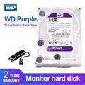 WD púrpura 6TB 3,5