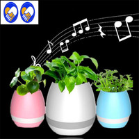 A Toy A Dream Smart LED Bluetooth Music Vase Speaker Real Plant Touch Sensing Flower Pot