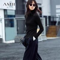 Amii Minimalist Casual Women Sweater 2018 Turtleneck Warm Female Pullovers Sweaters