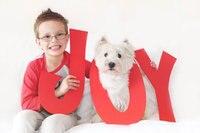 JOY Holiday Card Photo Prop Christmas Sign Holiday Christmas Cards Prop and Family Photography