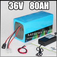 36v 80ah electric bike battery 3000W E Scooter lithium Battery with BMS Charger 36v li ion battery pack