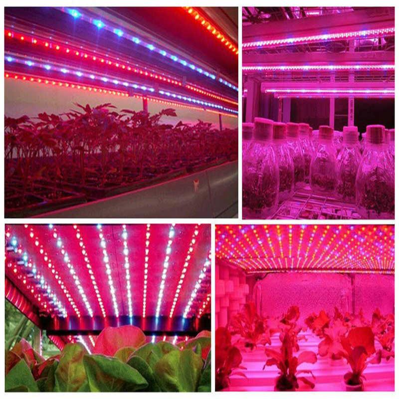 10pcs 3w smd 3030 epistar led grow light chip cob full spectrum 380-840nm 3w DIY led grow light chip for growth bloom flower