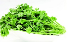 200 coriander seeds Cilantro rich aroma ,good cooking herb DIY Garden Vegetable seeds good taste delicious healthy free shipping