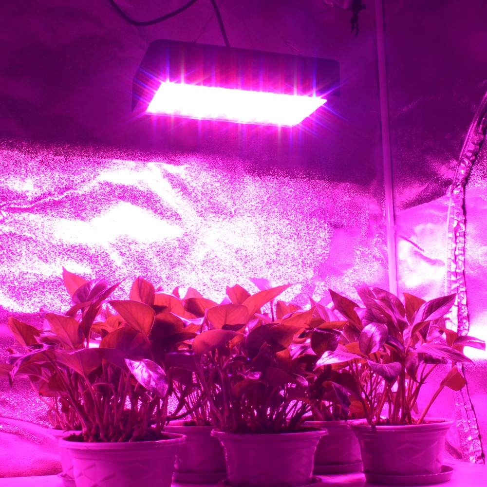 Full Spectrum LED Grow Light 300W 600W 1000W Growing Lamp Indoor Hydroponic Greenhouse LED Plant All Stage Growth Lighting 200w full spectrum led grow lights led lighting for hydroponic indoor medicinal plants growth and flowering grow tent