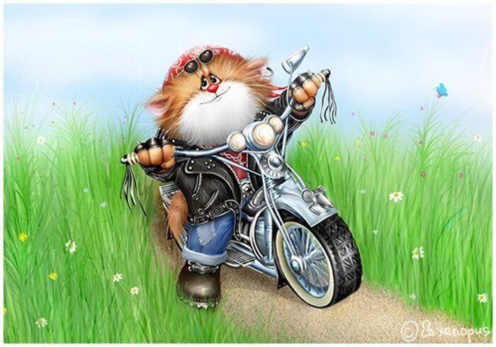 5D gyémántfestés Cross StitchCartoon macska motorkerékpár - Művészet, kézművesség és varrás