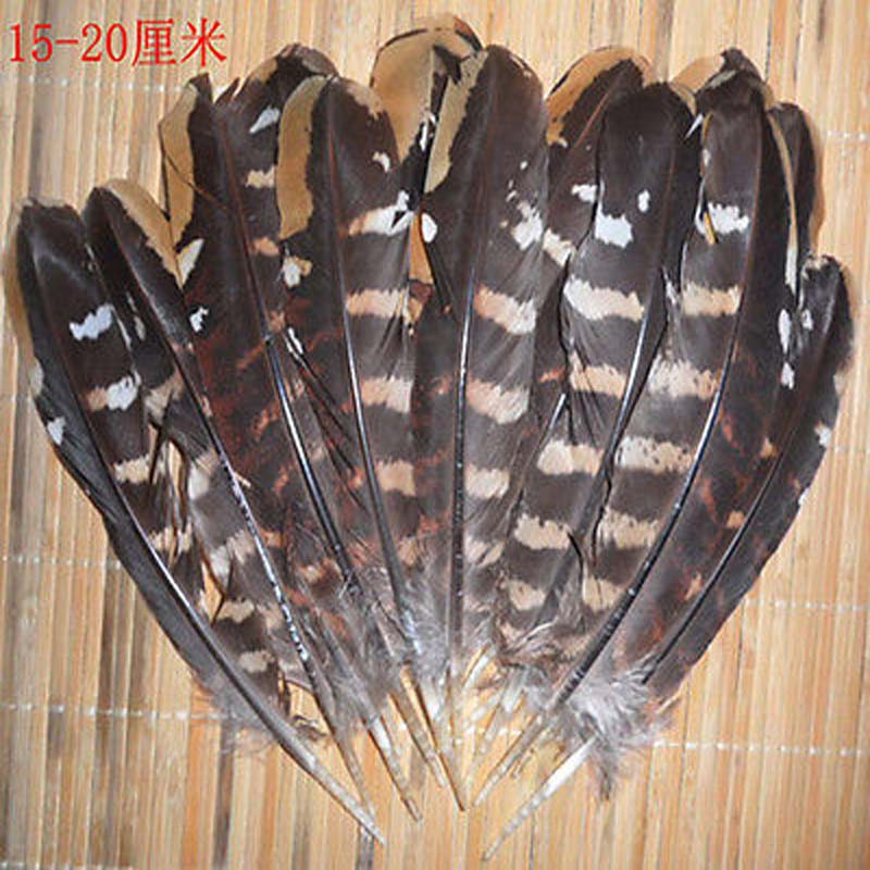 ᗐ¡ Nuevo! 10 unids hermoso pollo ala plumas 15-20 cm/6-8 pulgadas ...