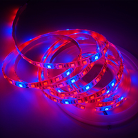 5m Lot DC12V Waterproof 60leds M 5050 SMD Red Blue 5 1 Growing Grow Led Strip