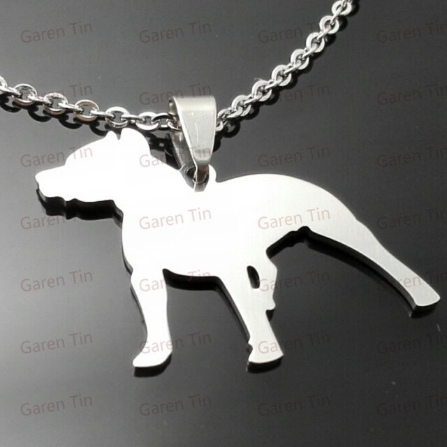 Pitbull pendant american pit bull terrier charms necklace in pitbull pendant american pit bull terrier charms necklace in stainless steel aloadofball Choice Image