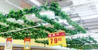 210 cm 12 unids Plantas Artificiales Sleaf Rohdea Grape Vine Fake Follaje Para El Jardín Del Banquete de Boda de Interior/al aire libre En Casa decoración, C22