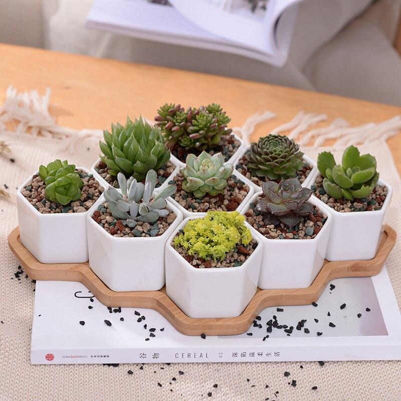 Ensemble de 9 Hexagone Pots de Fleurs Blanc En Céramique Plante Succulente Pot avec Support En Bambou Bonsaï Planteur Décor À La Maison Ornement