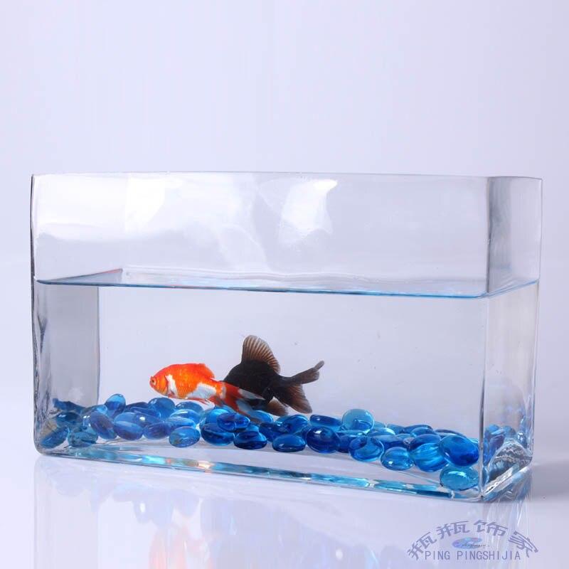 Aquarium rectangulaire verre for Aquarium plat