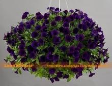Восхождение Семена цветов Темно-Синий Цветок Петунии, 100 Семена/Пакет, горшках Сад Петунии Декоративное Растение легко Выращивать!
