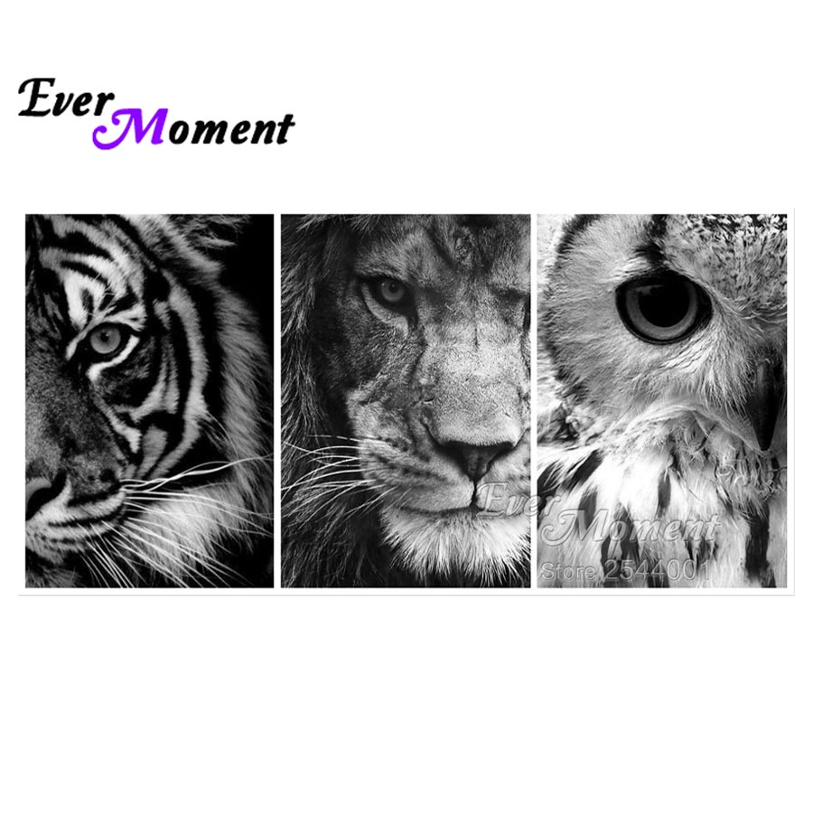 Detail Feedback Questions About Ever Moment Diamond Painting Tiger