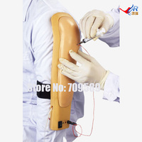 Wearable Intramuscular Injection Upper Arm Injection Training Arm Model