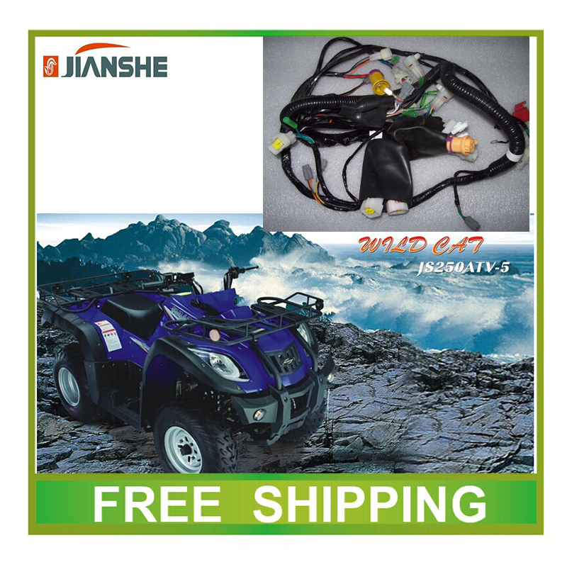 JIANSHE 250CC ATV JS250 full electric wire cable motorcycle accessories free shipping