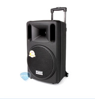 Fidek FPX 100BT card outdoor Professional Audio Trolley speaker Portable rod WiFi mobile speaker battery 10 inch With Bluetooth