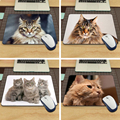 Maine Coon Cat Hot Sale 18*22cm and 25*29cm Mouse Pad Mat Comfort Mice Pads