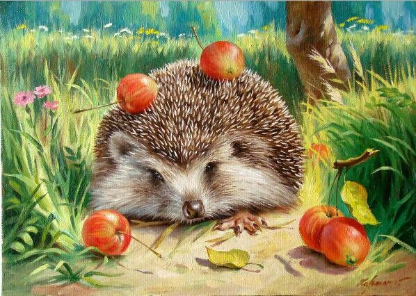 HQ Lovely Hedgehog Home Decor Painting Picture By Numbers Handwork Draw On  Canvas Office Decoration Gift
