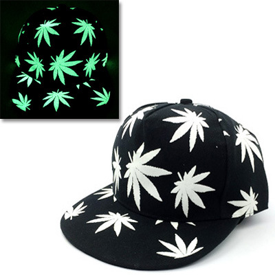 53949c9848733 2016 Wholesale Women Men Fluorescence hip hop hats Gorras bone sport baseball  caps Casquette Wolf night light snapback hat
