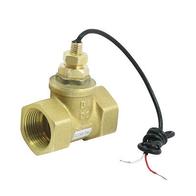 1-30L/Min 10mA 70W 3/4PT Female Port Thread Brass Piston Flow Switch Flowmeter1-30L/Min 10mA 70W 3/4PT Female Port Thread Brass Piston Flow Switch Flowmeter