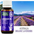Thursday Plantation Lavender Oil 100% Pure 25ml Massage oil Calm Soothe Rrelax body & mind Improve Sleep Quality Relieve nervous