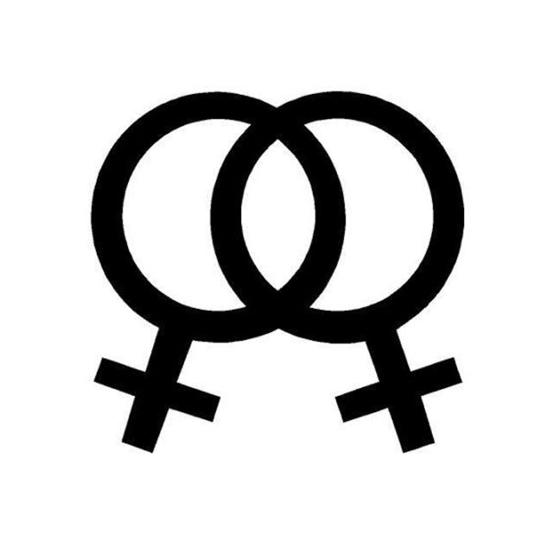 13 9 13 3cm Interesting Lesbian Flag Car Stickers Stylish