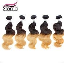 100 Free Shipping 5pc Brazilian Virgin font b Hair b font Ombre Body Wave 1B 613