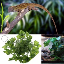 Buy Fake Terrarium Plant And Get Free Shipping On Aliexpress Com