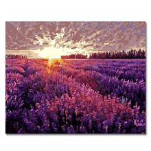 WEEN Purple lavender field-Framed DIY Oil Paint By Numbers kit for adults,Wall Art picture,Digital Canvas Painting by numbers
