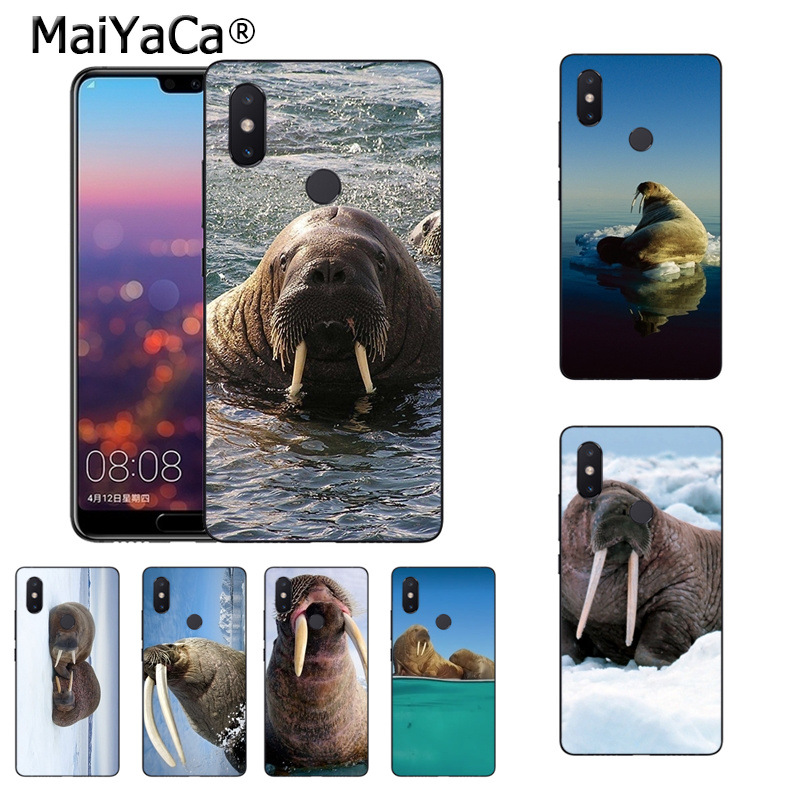 MaiYaCa walrus faces On Sale Luxury Cool Phone Accessories Case for xiaomi mi 8 se 6 note2 note3 mix2 redmi 5 plus note4 5 Cover
