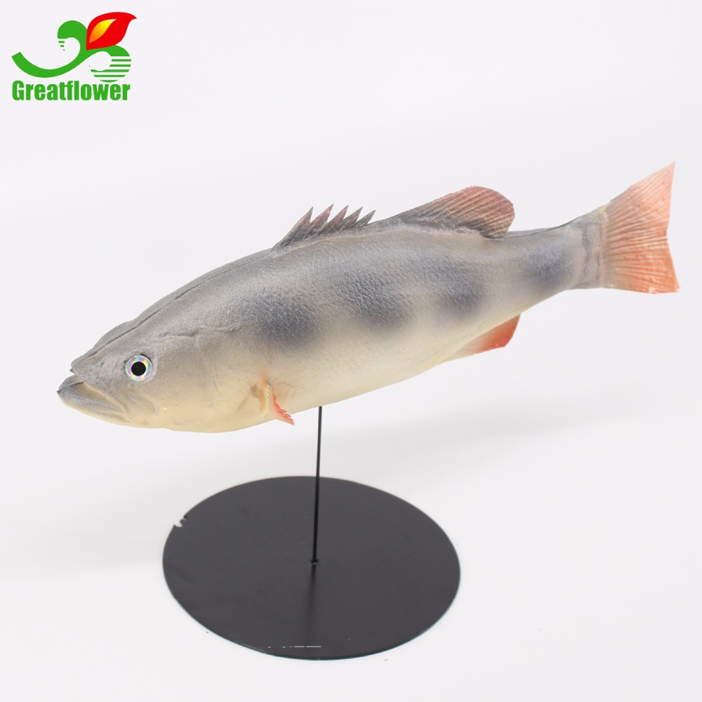 Home Decor Market Us 12 89 Pack Of 2pcs Simulated Animal Fish Model For Kids Pretend Play Home Decor Market Dispiay Photography Porp Kitchen Decoration In Photobooth