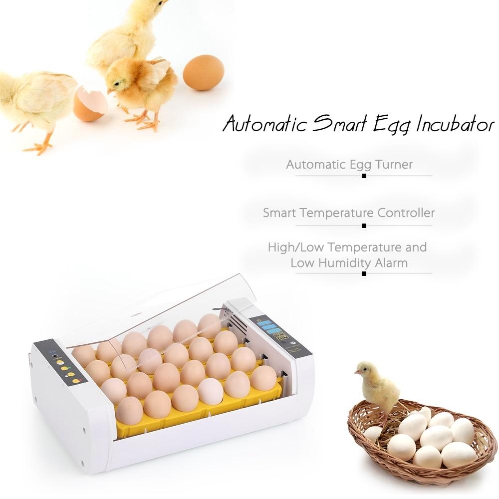 24-Nascedouro Incubadora Do Ovo Automática de Controle de Temperatura Inteligente para Incubação de ovos de Codorna Aves Frango Pato Bird