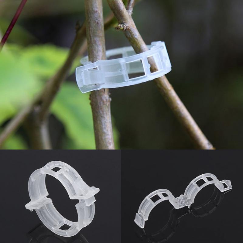 Plastic Plant Support Clips 50/100Pcs Vine Tomato Stem Vegetable Fixing Clip Garden Greenhouse Accessories 30mm Plant Clips