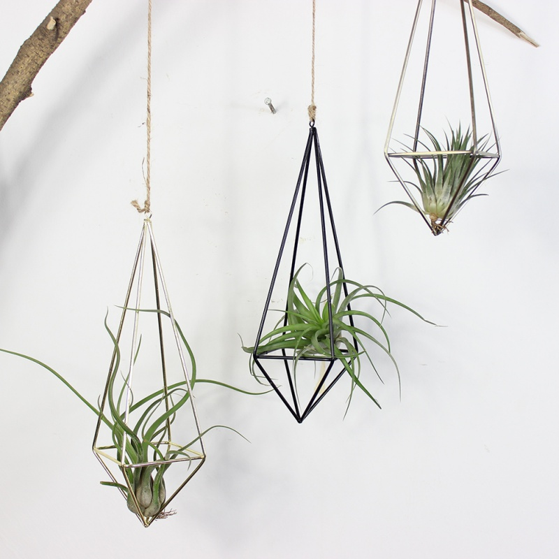 Freestanding Hanging Metal Tillandsia Air Plant Rack Holder Quadrilateral  Pyramid Shape Geometric Hollow Flower Pots